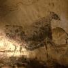 小1/博物館/004:ラスコー展 クロマニョン人が残した洞窟壁画(国立科学博物館)